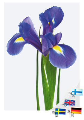 Kondoleansadress Iris